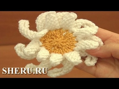How to Knit Daisy Flower Tutorial 16 Вязаная ромашка