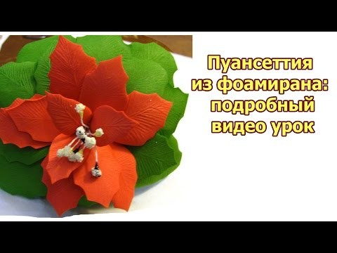 DIY: foam flowers tutorial. Пуансеттия из фоамирана: подробный видео урок