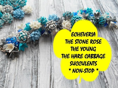 ECHEVERIA * THE STONE ROSE * THE YOUNG * THE HARE CABBAGE * SUCCULENTS * NON-STOP * POLYMER CLAY